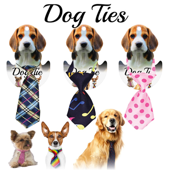 12 Assorted Dog Ties carded